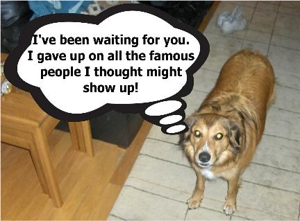 Funny Dog Emma