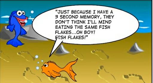 funny goldfish cartoon. Funny Cartoon Critters
